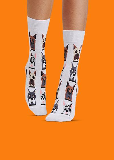 de07bc2ce4d1 Носки и трусы | Купить мужские и женские цветные носки и трусы ...